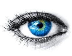 A beautiful, healthy blue eye