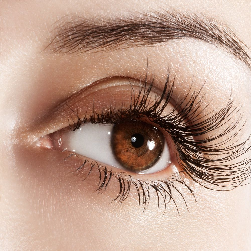 Close up of woman's brown eye and very long eyelashes