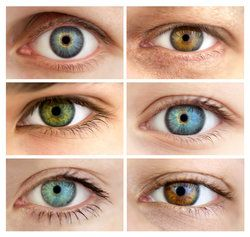 Set of 6 Different Open Eyes