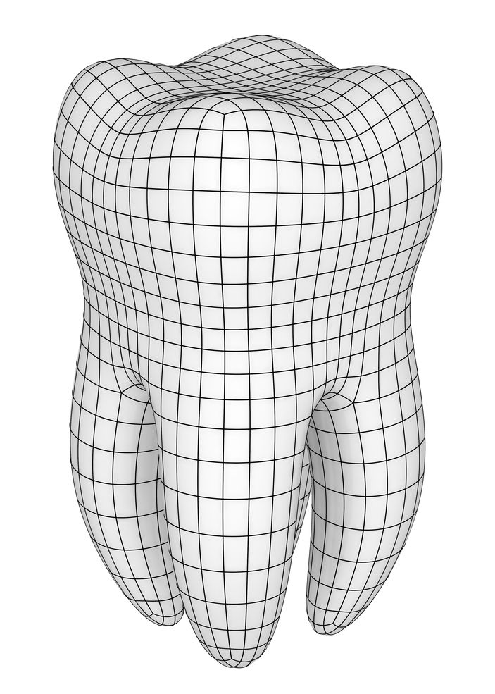 A 3-D rendering of a full tooth, including roots, wrapped in grid lines