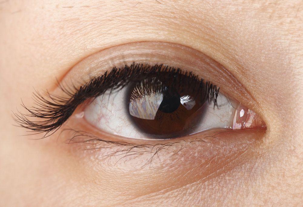 Closeup view of a human eye