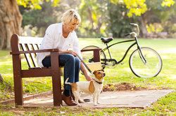 A blonde woman sitting on a park bench with her dog and bicycle in the background.