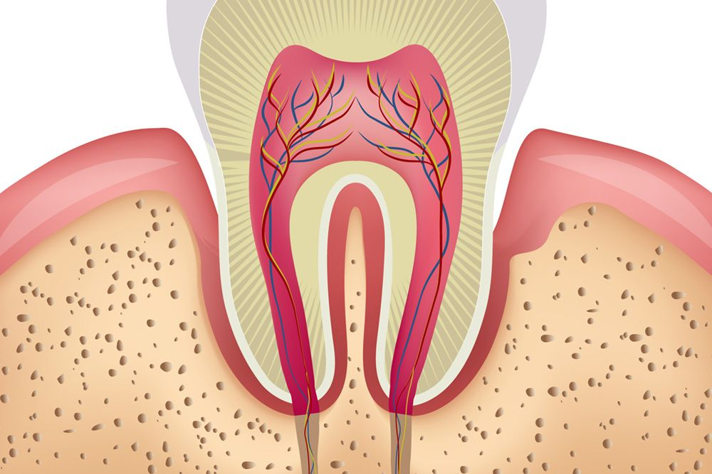 Exposed Tooth Roots and Sensitive Teeth - Gum Recession and Dental ...