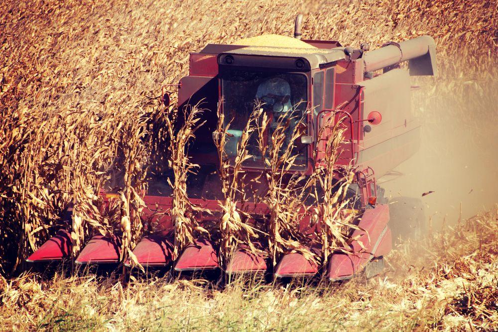 farming equipment in field