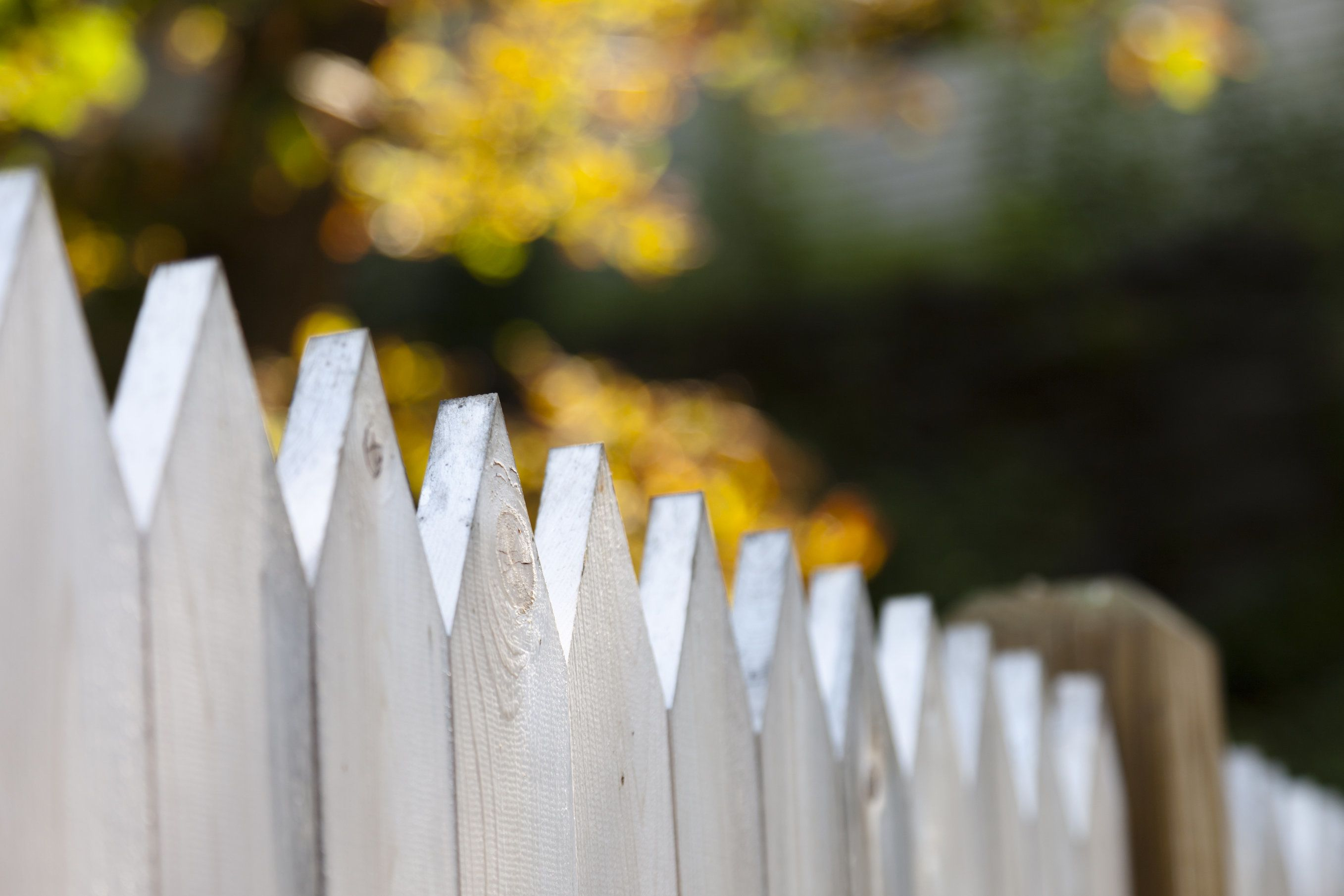 A fence between two residential properties