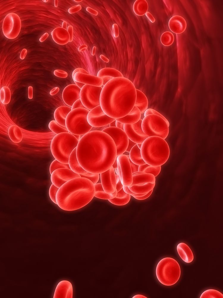 Close-up on blood cells