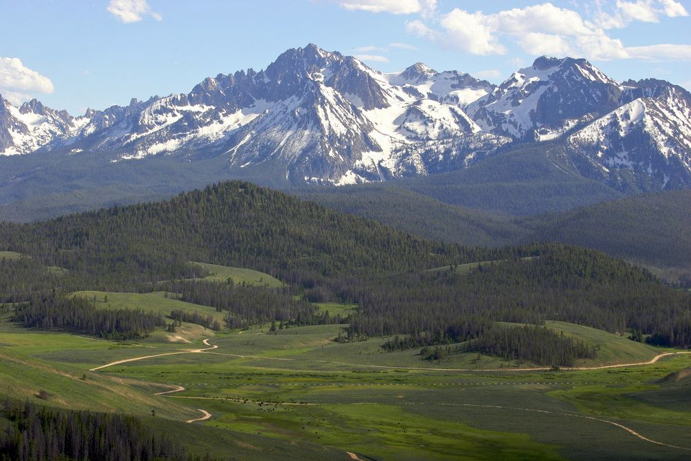A landscape view of a beautiful green valley and snow-covered mountains in the background.