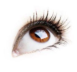 Brown eye looking up