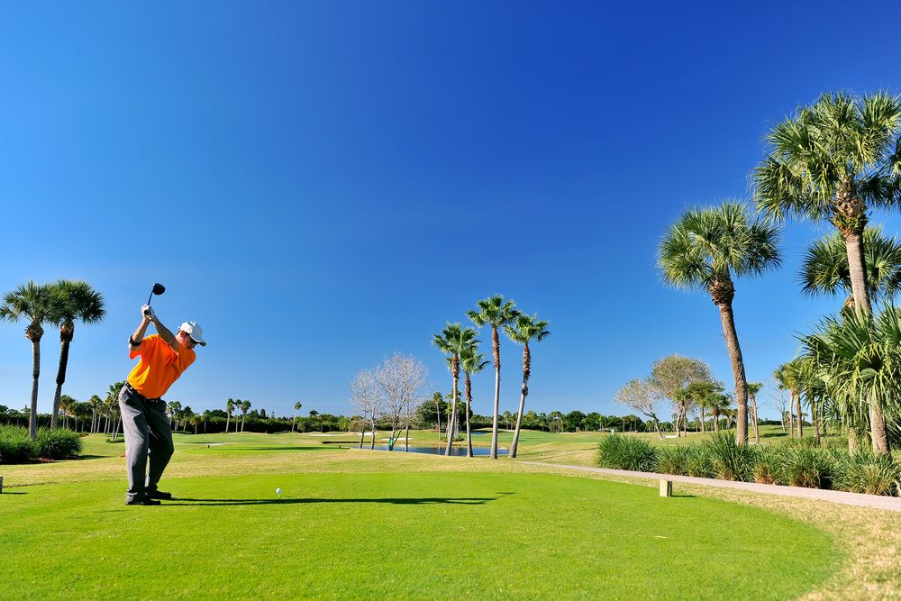 Man playing golf on beautiful sunny day surrounded by palms