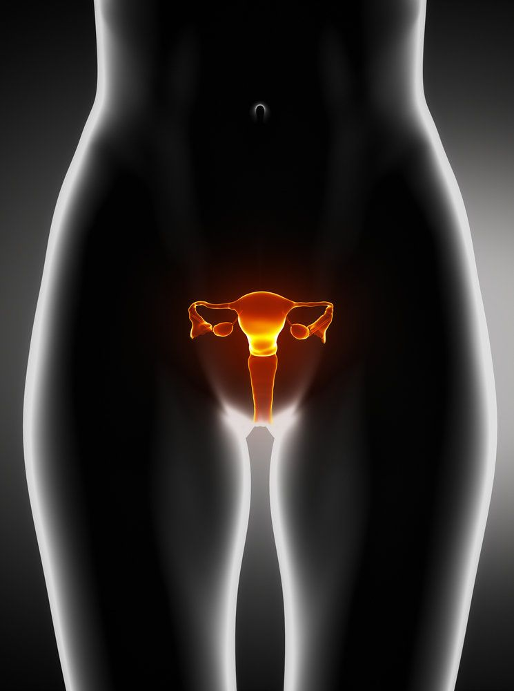 An illustration of a woman's reproductive system, including the ovaries