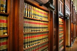 Lawyer reviewing law publications.