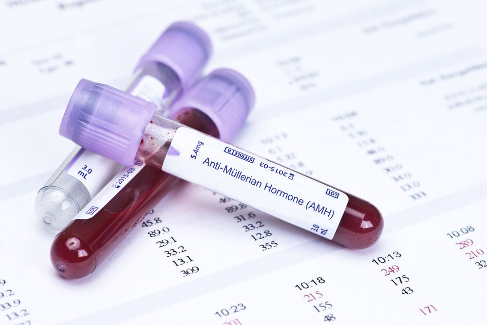 Blood work during IVF treatment